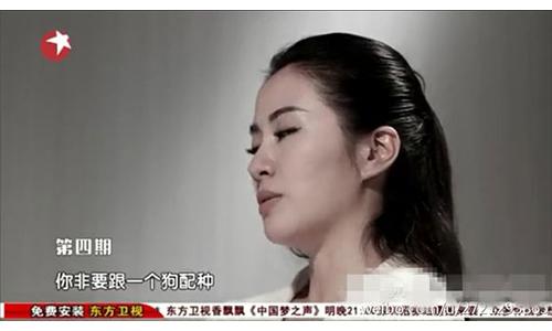 叶璇退赛《女神的新衣》图片